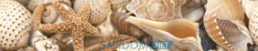 Фриз Sea Breeze (Shells) 30x6cм